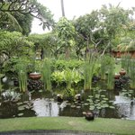 un hermoso estanque frente al restaurante