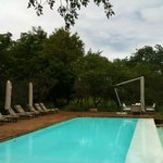 poolside, view from bar