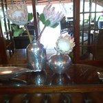 mooie stillevens met Protea