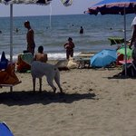 Bau beach 1