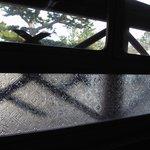 「翁の間」の窓ガラス