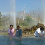 Cooking eggs in the hot springs - geysers are fake, pools not