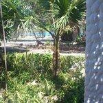 Jacaranda Indian Ocean Beach Resort, dec 2012