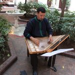 zither player