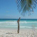 World Class Beach....