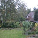 il giardino esterno