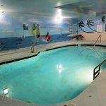 Indoor Pool with Basketball Goal