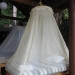 mosquito netted beds in the palapa closest to the water fall on property