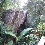 the shower palapa from the palapa nearest the on site falls