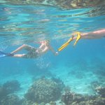 The kids enjoying the snorkel