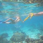 The kids enjoying the snorkel