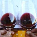 Comparing wines at Pulenta