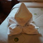Fancy towel Folding