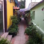 Coloane - lovely street lined with potted plants