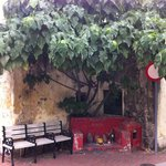 Coloane - bench next to the city square