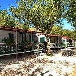 Camping Alberello Foto