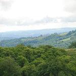 nature généreuse, collines verdoyantes