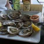 Fresh Oysters from Crazy Flamingo