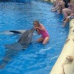 Aqualand dolphin kiss
