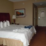 Hampton Inn and Suites Charlottesville - At The University Foto