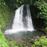 Waterfall on grounds