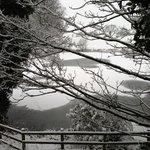 snowy grounds in jan 2013