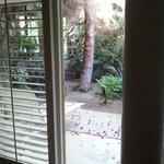 Parker Palm Springs - Junior Suite Patio