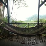 Porch, hammock and the view