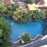 A nice pool surrounded by nice garden