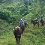 equestrian trek