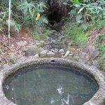 Natural mineral spring bath!