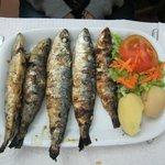 sardine fritte...