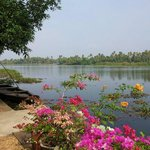 The beautiful backwaters