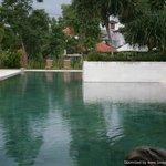 Long pool!