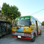 one love bus,negril