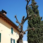 Foto de Relais San Michele