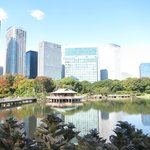 View from Hamarikyu garden