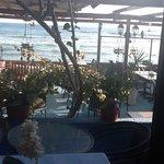Mer Bleue restaurant