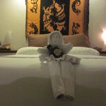 Loved the nightly towel art to greet us on our returns from dinner