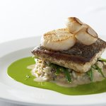Sea Bass from The Brasserie on the Bay