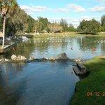 W dnie jeziora sa 3 bijace zrodla, nadmiar wody odplywa do Zat.Meksyk.