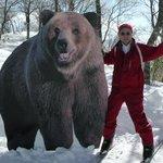 クワッド降りたら熊さんが居たよ。