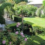 Rose garden right outside the Garden Room
