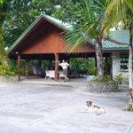 Entry/Reception area