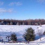 Winter view from back yard Gardener room deck