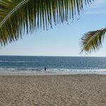 Beach at Playa El Palmar