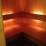 sauna in president suite