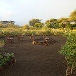 zona dove la sera ci si riunisce e davanti al fuoco i masai ballano le loro danze