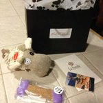 The Emilia Poochie Gift Bag complete with toy and gourmet biscuit.