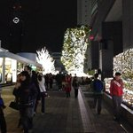 Xmas lights, Southern terrace walkway